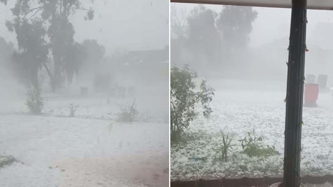 Hail almost appears to blanket grass in a Tamworth front yard like snow.