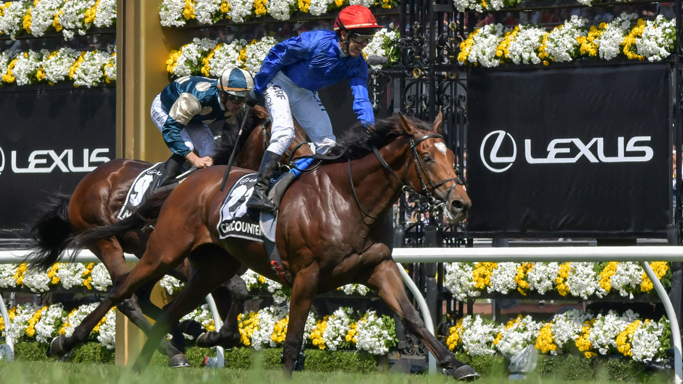 Melbourne Cup form guide: find your winner here