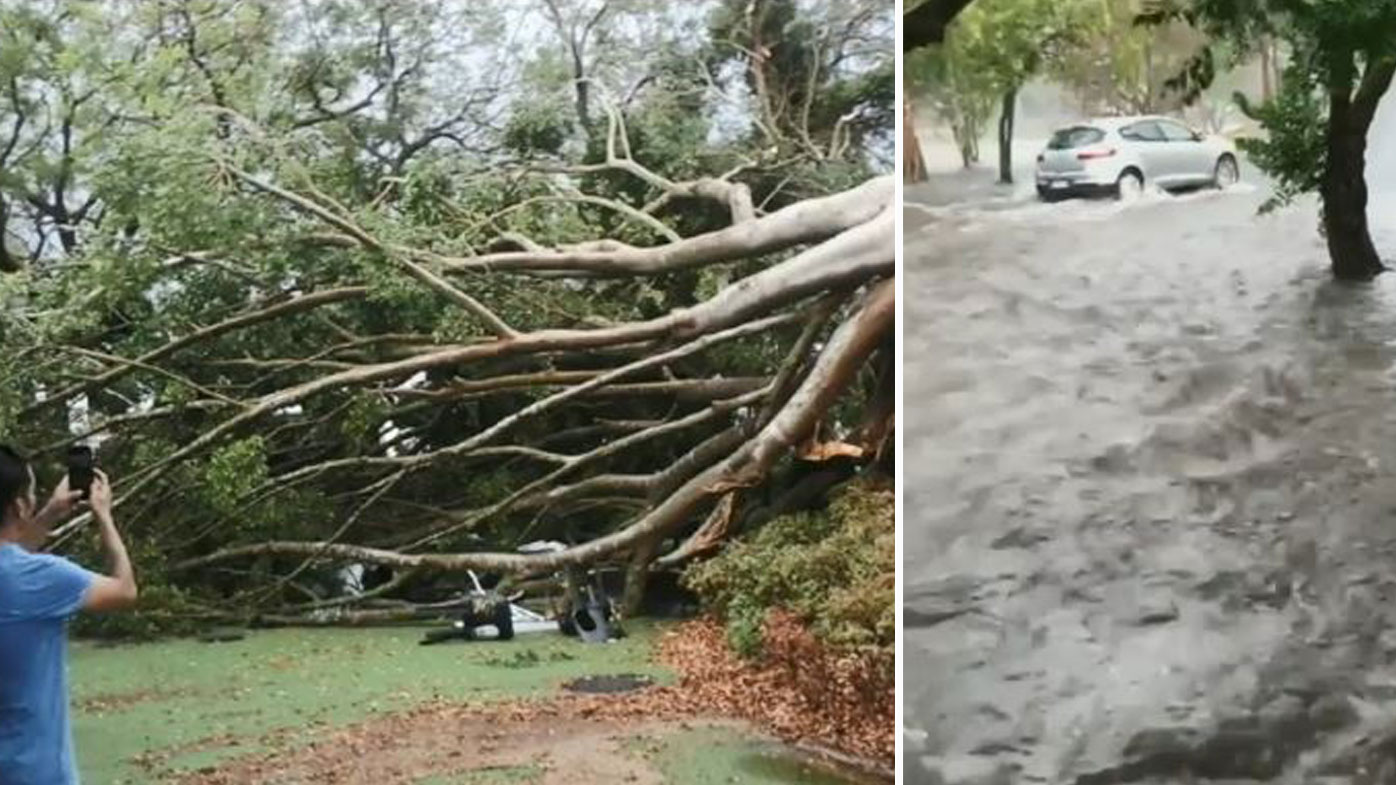 Once in century storm lashes Queensland
