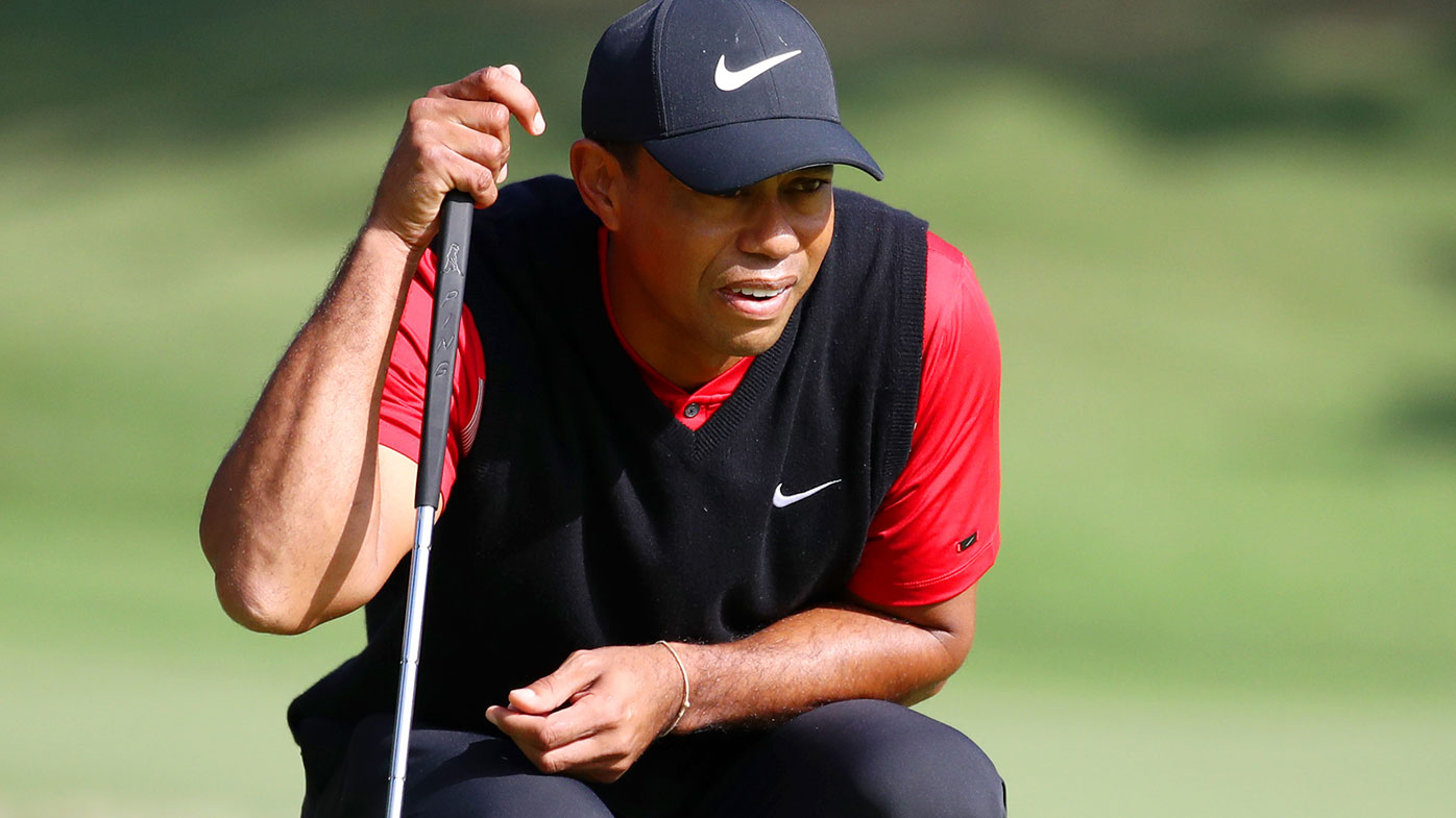Doubt cast over 'hit and miss' Tiger