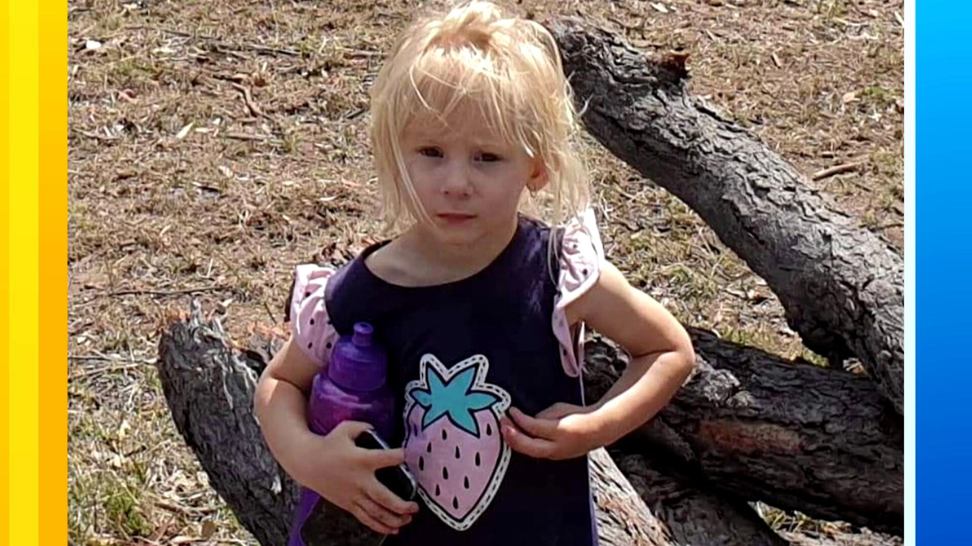 Missing toddler found dead in Queensland dam