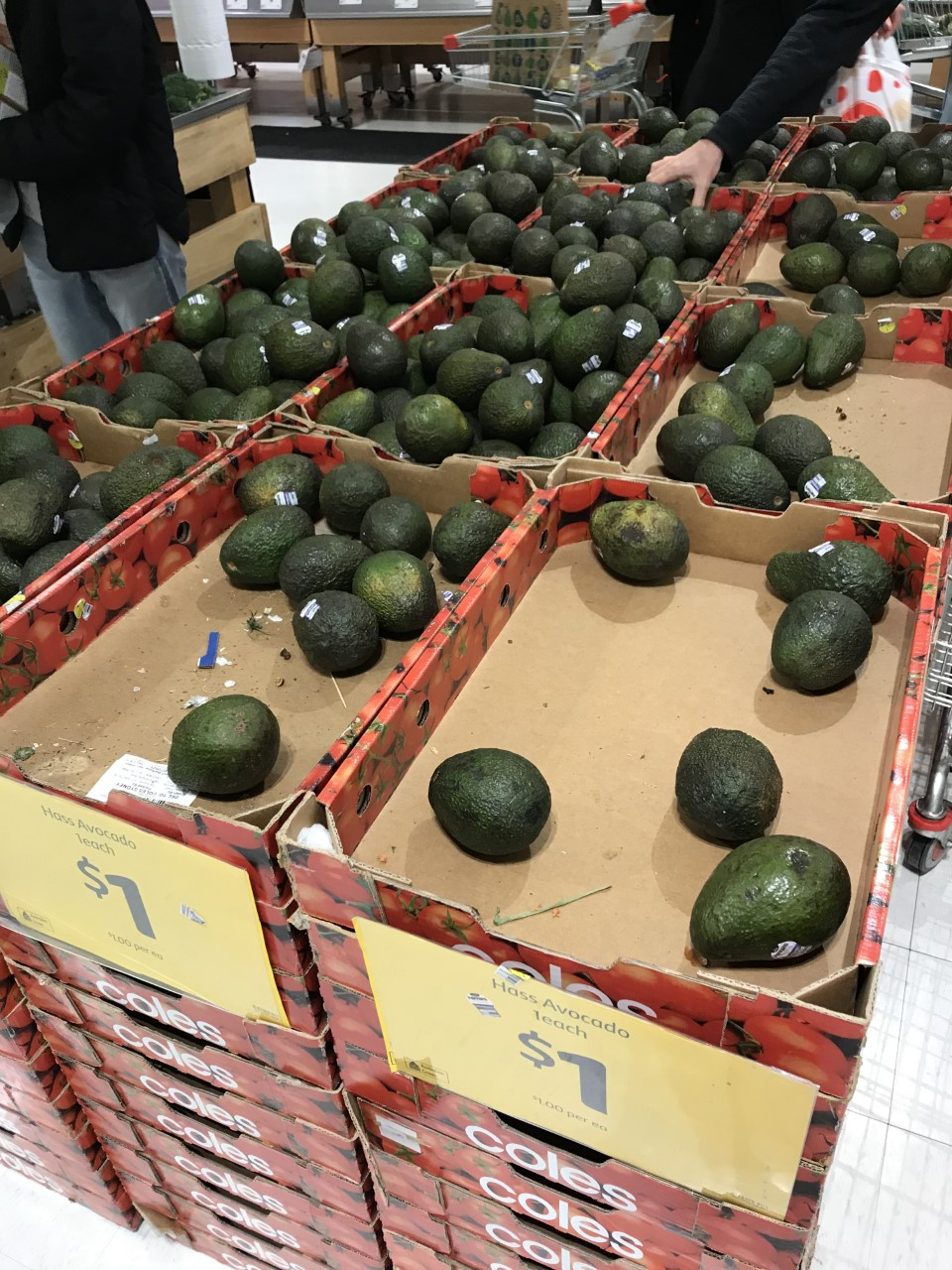 People panic buying avocados in Broadway Shopping Centre, Sydney.