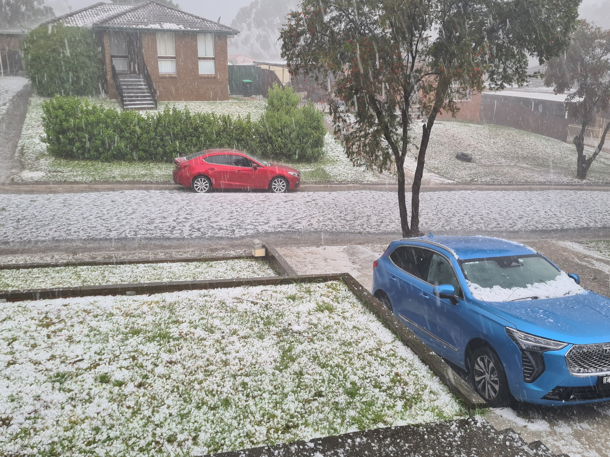 Parts of NSW have been blanketed white in hail.