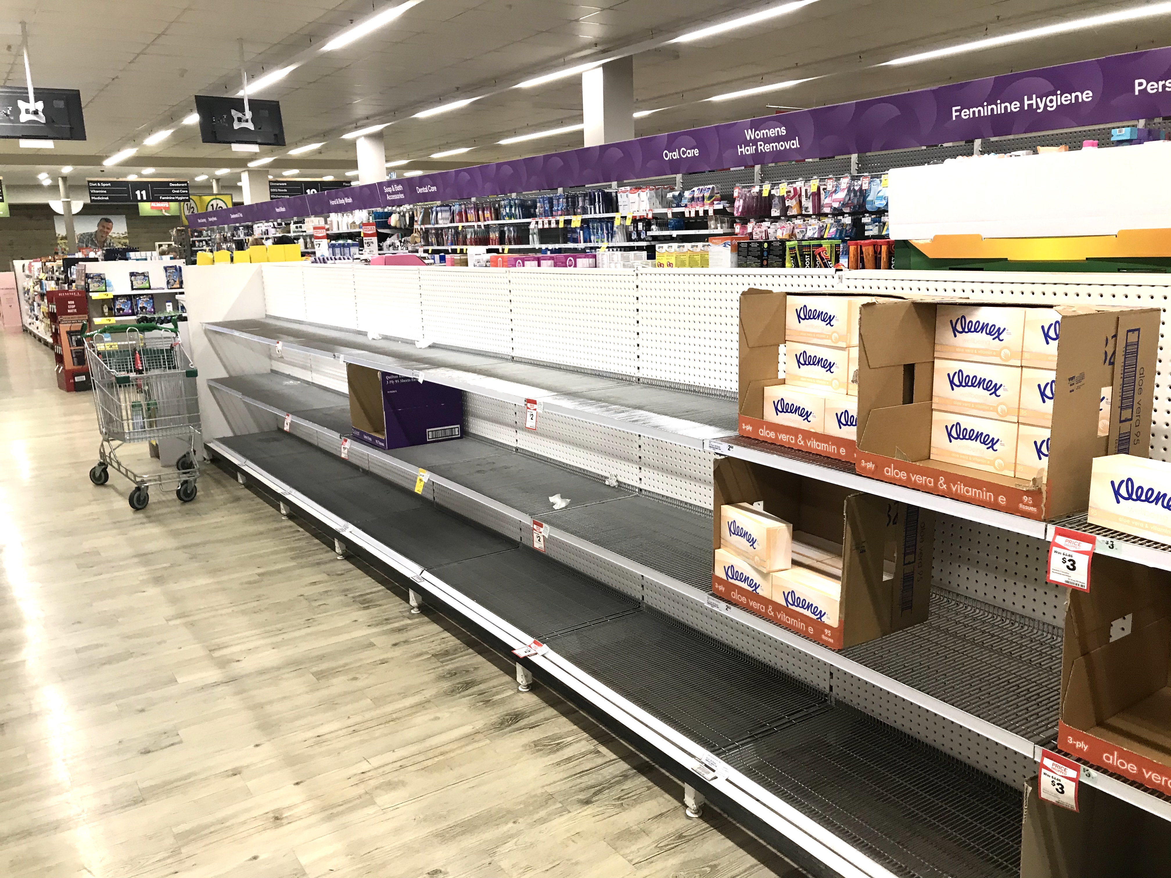 Bare toilet paper and tissue shelves in Sydney supermarket.