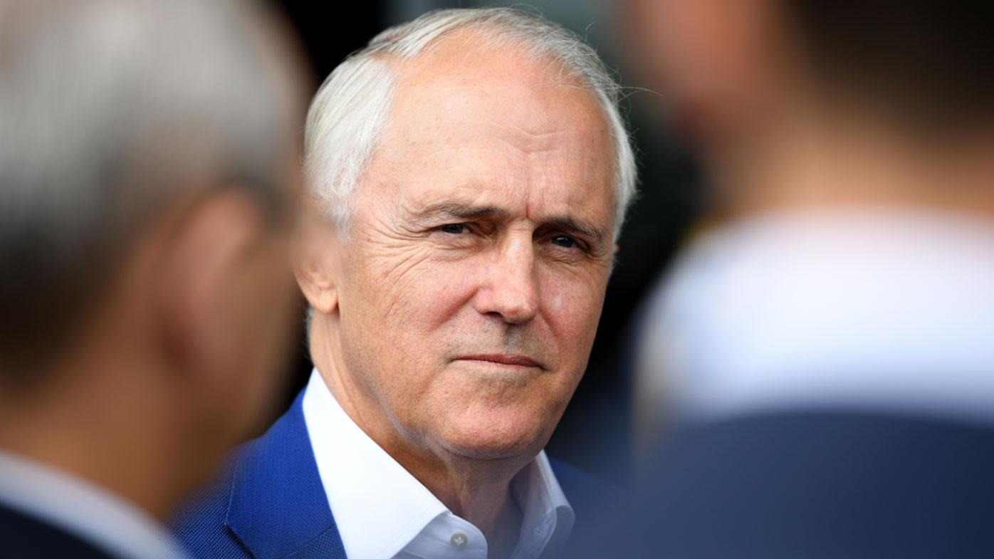 Turnbull takes aim at Cormann, Credlin, rivals