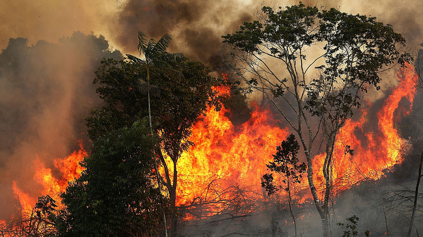 Humans are responsible for '99 per cent' of the Amazon fires