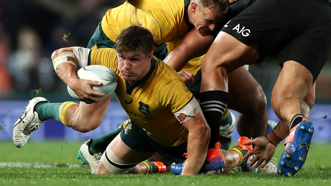 Rugby Bledisloe Cup Dates Locked As Government Gives Wallabies The All Clear All Blacks