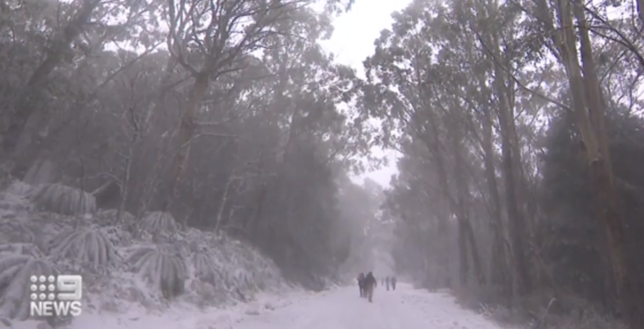 Cold snap sweeps across south-eastern Australia