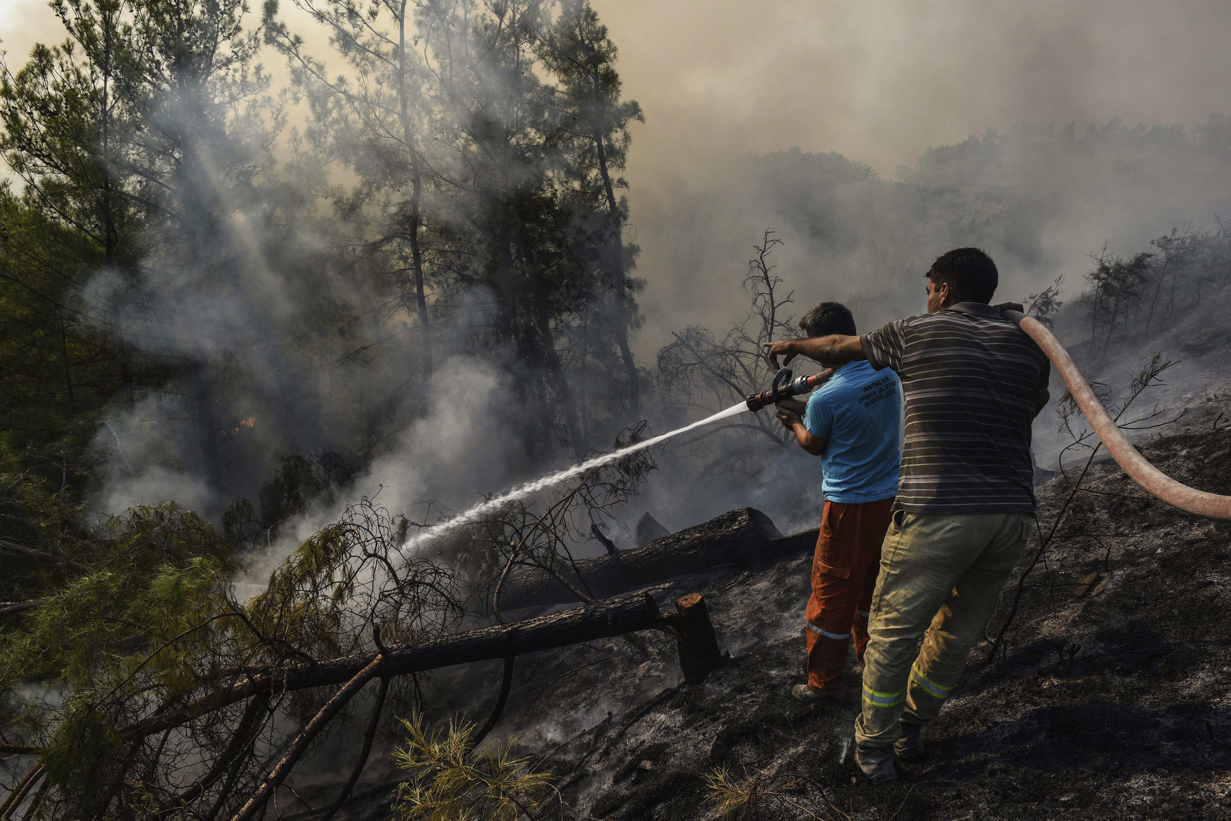 Villagers water trees to stop the wildfires that continue to rage the forests in Manavgat, Antalya, Turkey, early Sunday, Aug. 1, 2021.  (AP Photo)