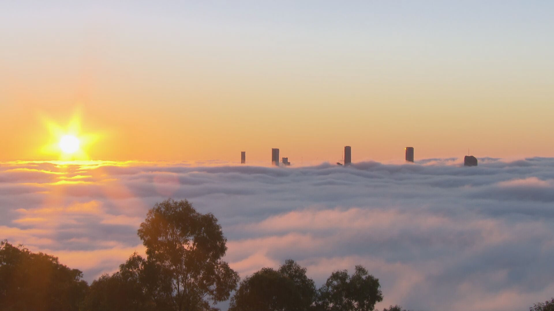 Thick layer of fog creating hazardous conditions for commuters