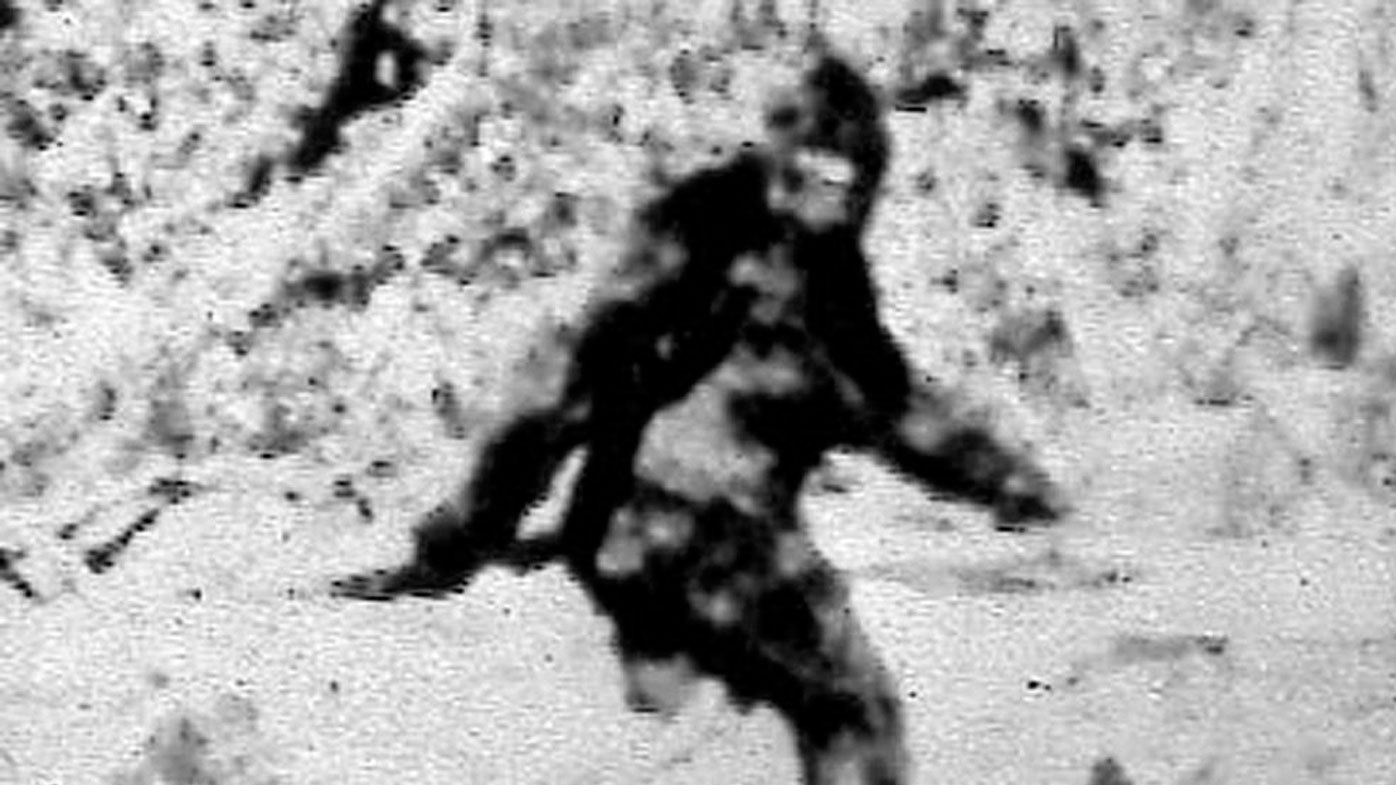 Photographers Roger Patterson and Bob Gimlin claimed this 1967 shot, taken in California, captured a female bigfoot.