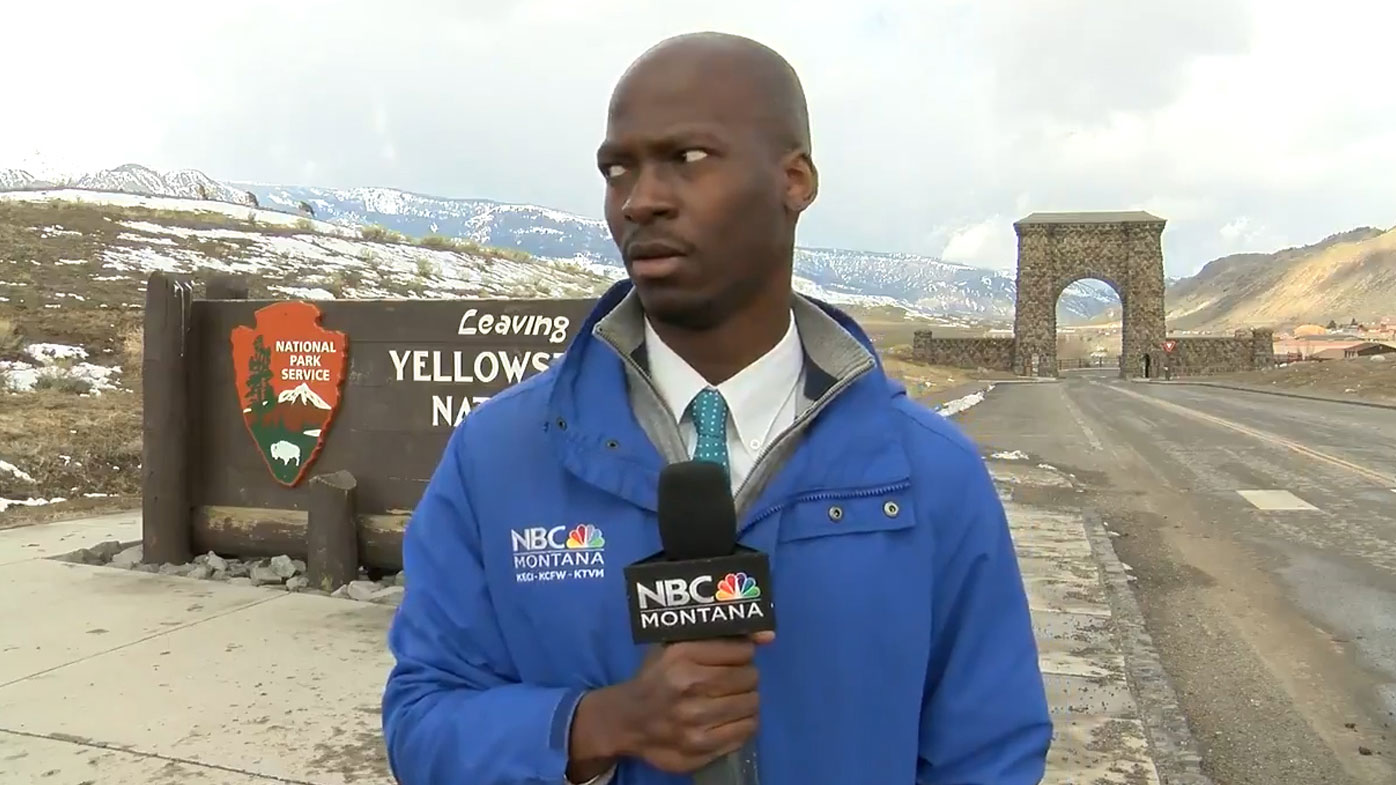 'Oh no': Reporter's hilarious reaction to unexpected wildlife