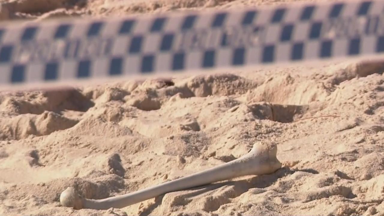 Perth dog beach bone