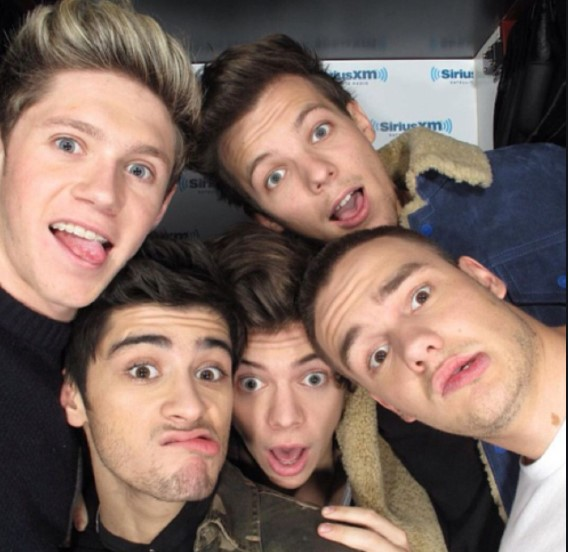 From left to right: One Direction stars Niall Horan, Zayn Malik, Harry Styles, Louis Tomlinson and Liam Payne.