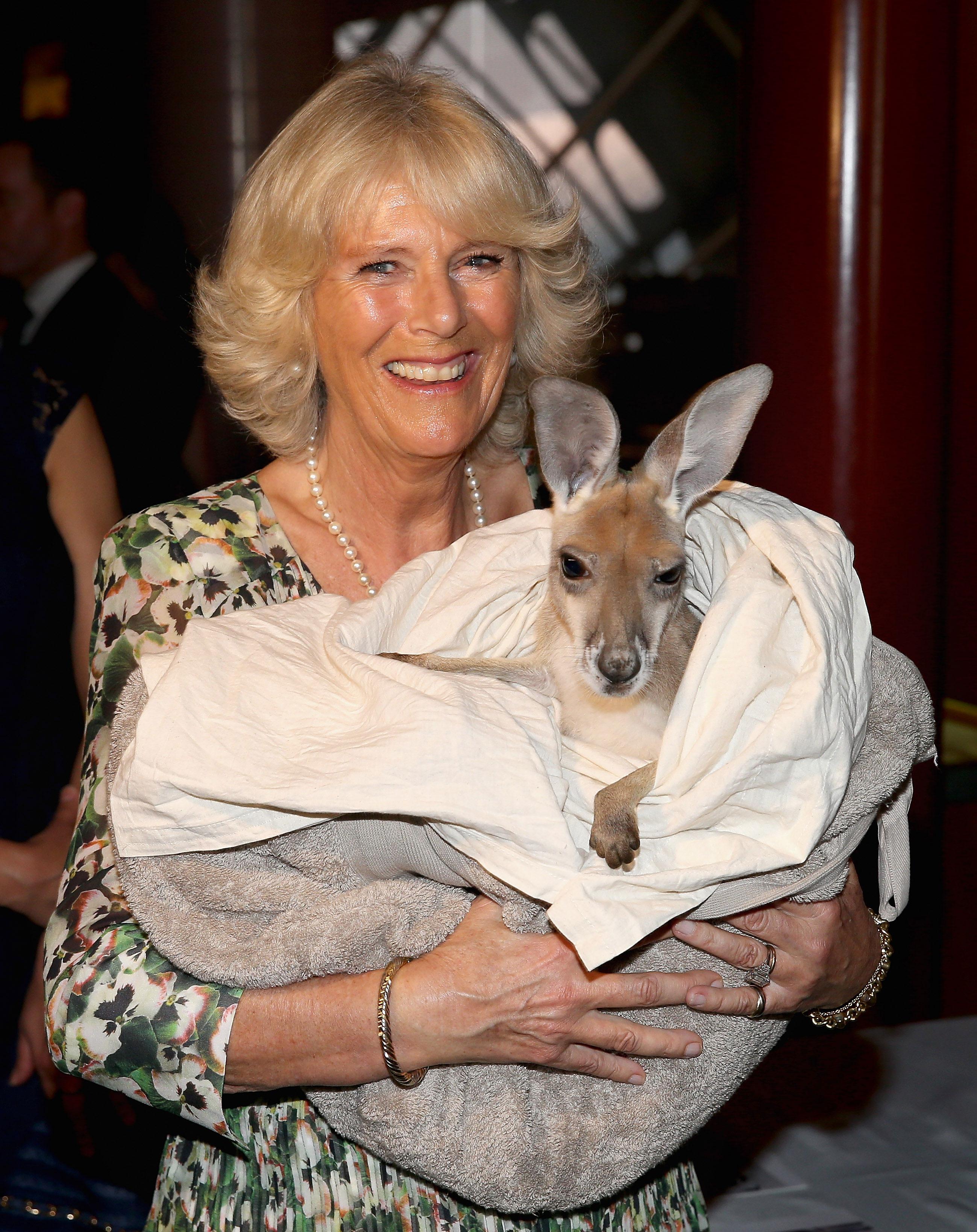 Camilla makes 'generous and practical' donation to Australian bushfire victims