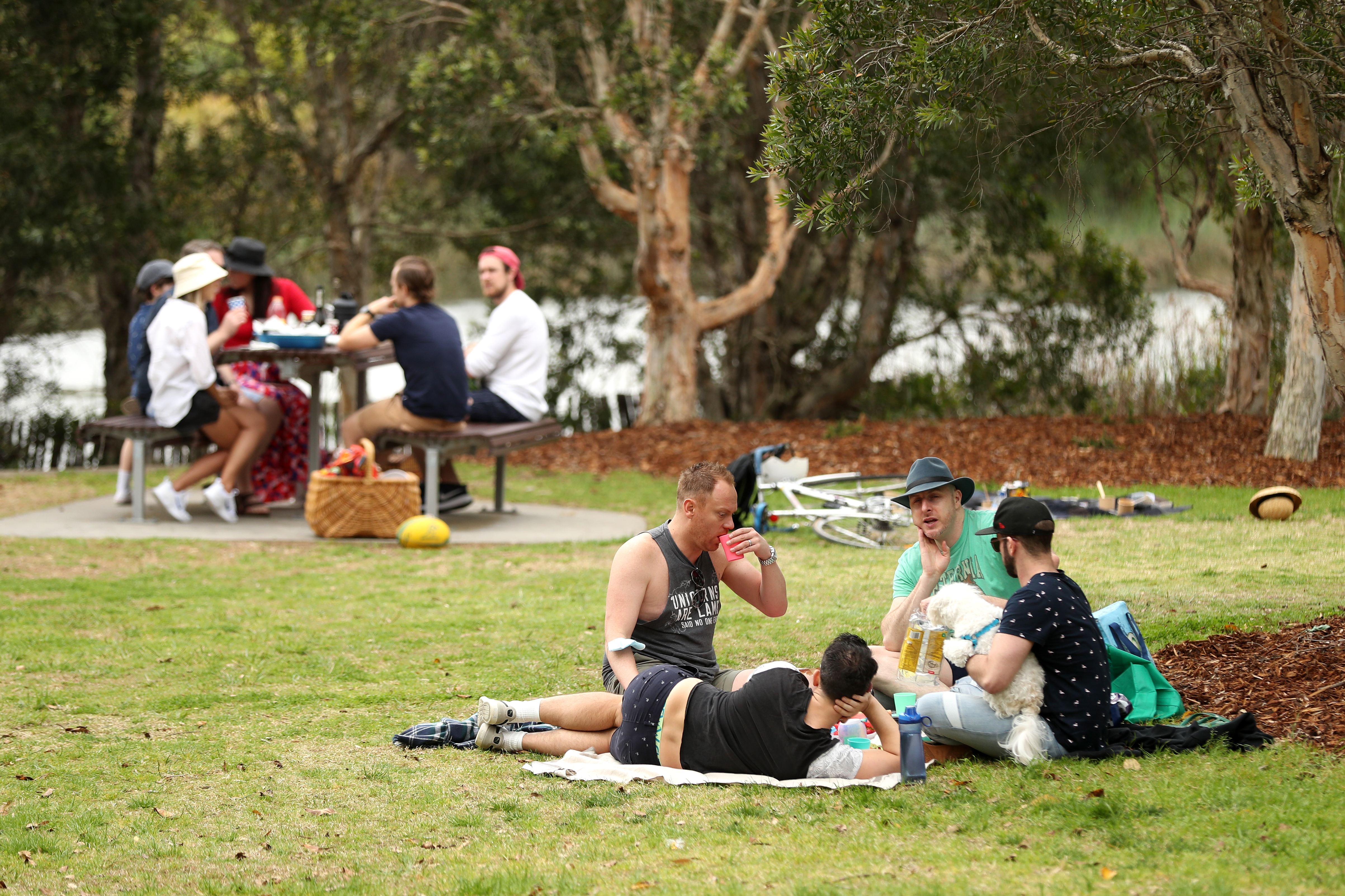 Bottoms up: Sydney frees up more parks for beer and bubbles