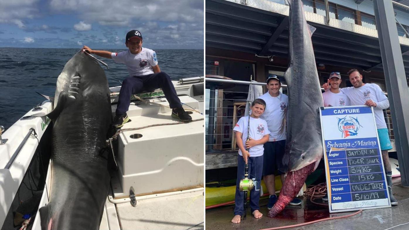 Sydney boy, 8, reels in 314kg shark in world record breaking catch