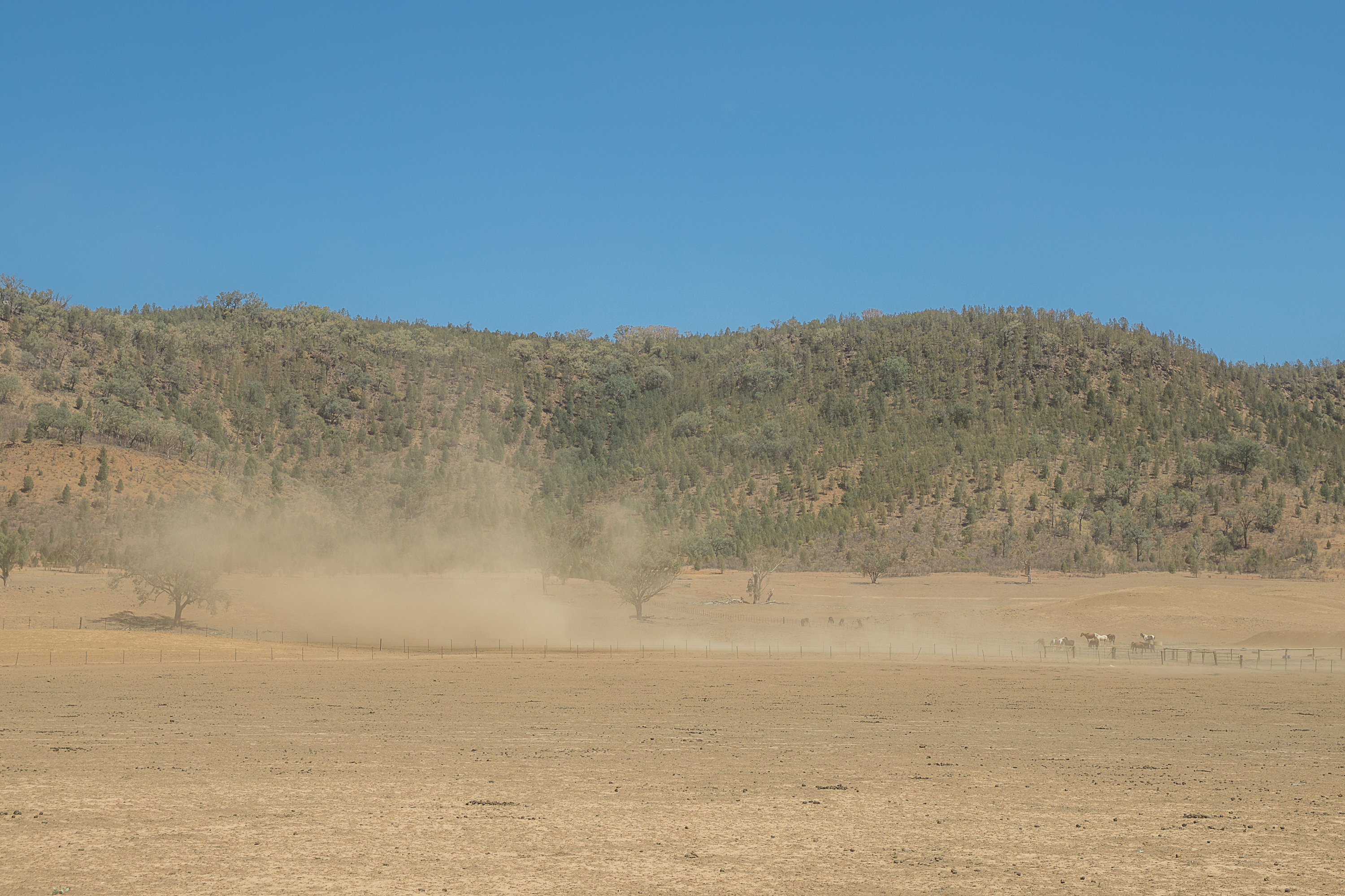 Upper Horton in the Gwydir Shire has been experiencing dust storms at least weekly.