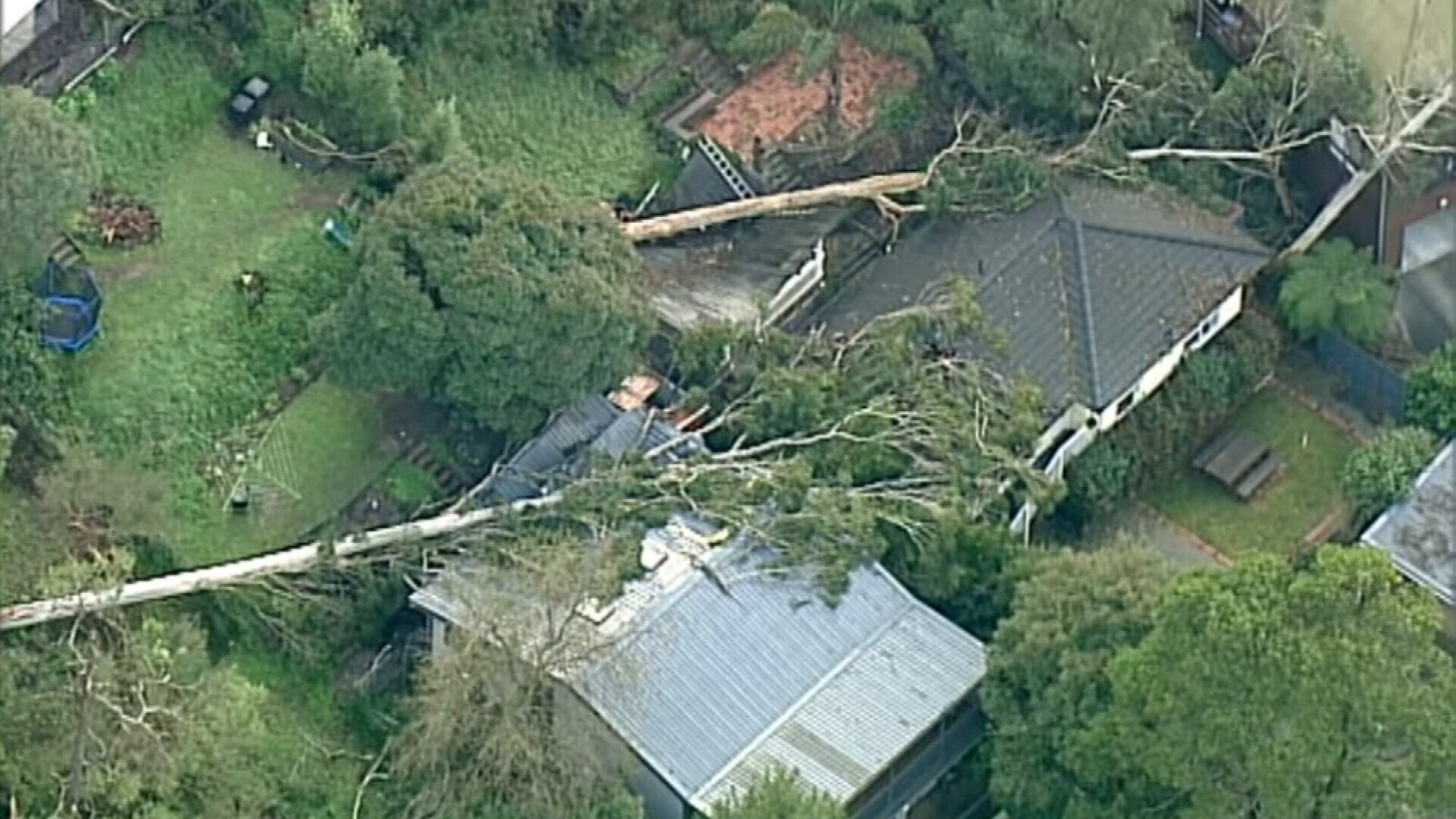 Victorians have been warned of potential for falling and trees, as more wild weather is expected for some parts of the state.