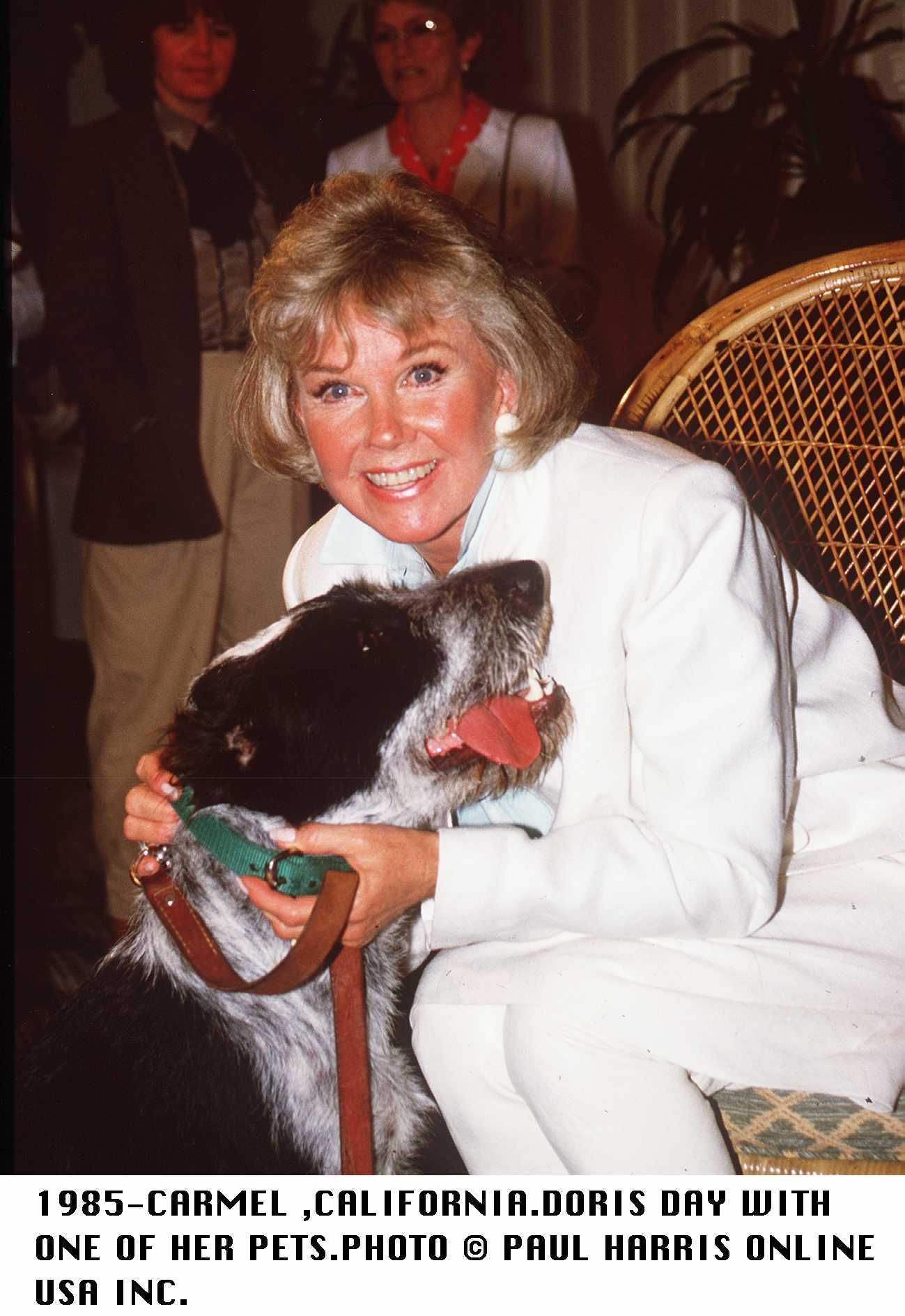 Doris Day in 1985.