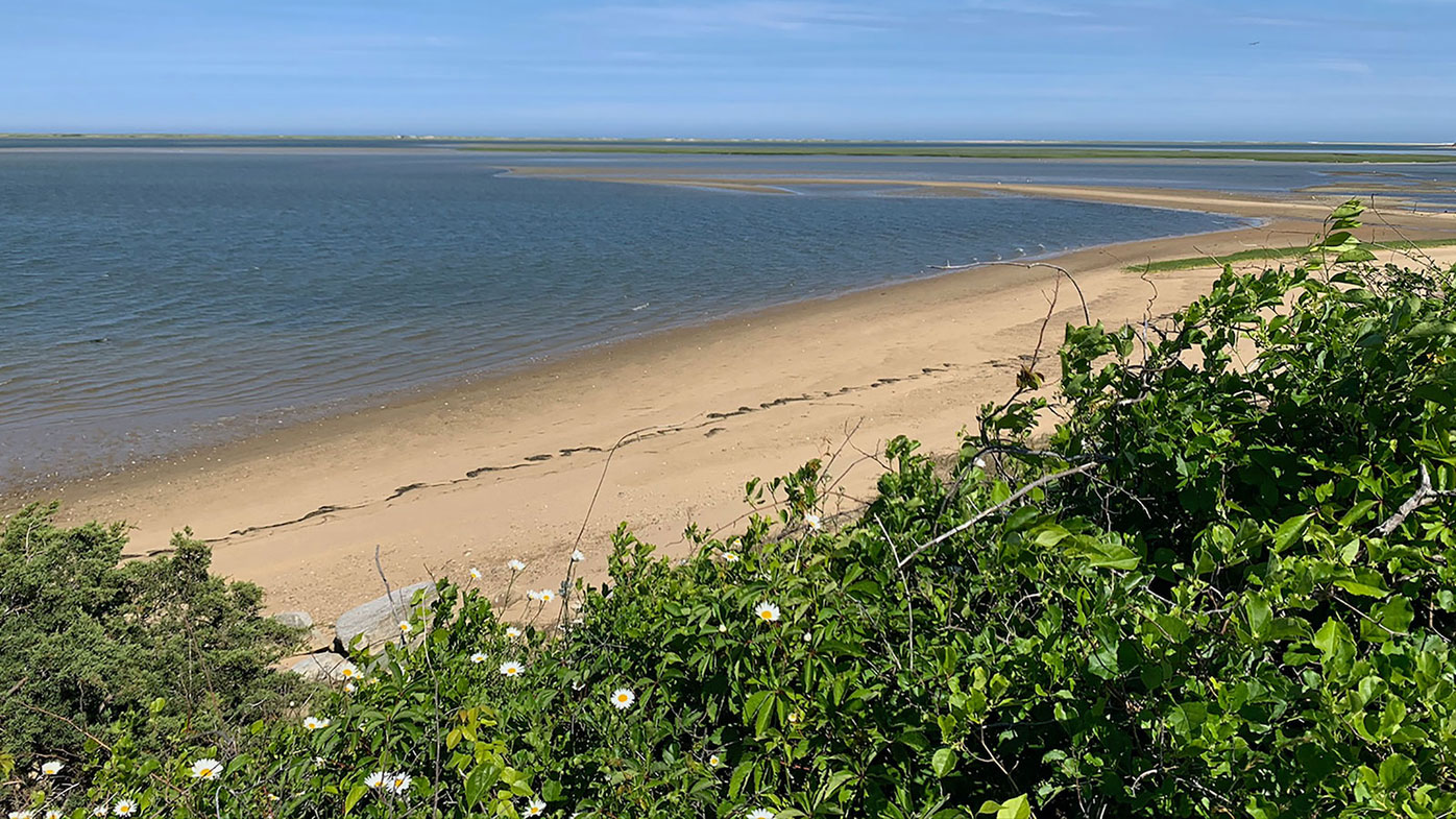 The 24-acre island is located just off the coast of Cape Cod in an area known as Pleasant Bay - an area that is of critical environmental concern.