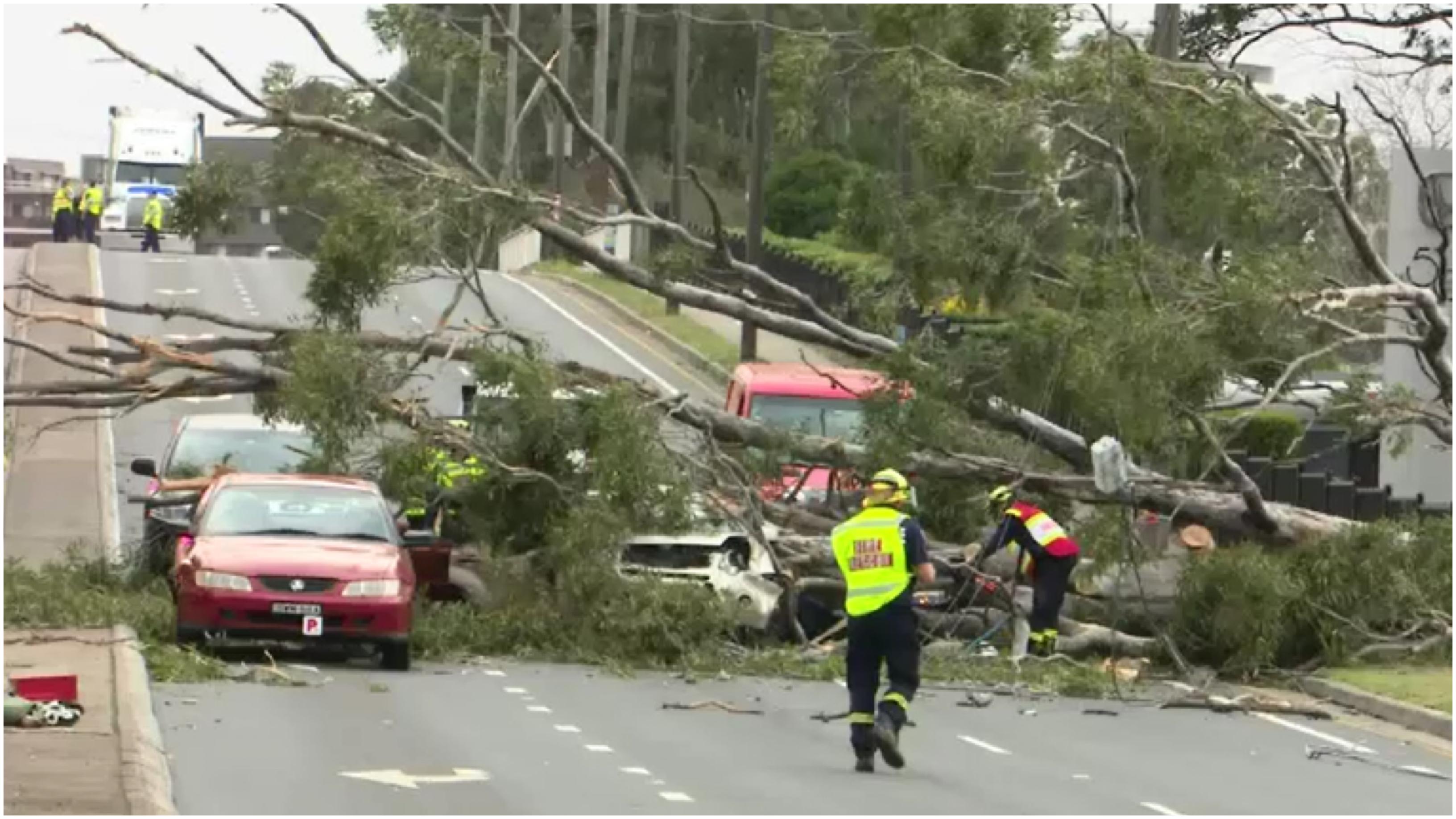 Thousands without power as damaging winds pummel Sydney