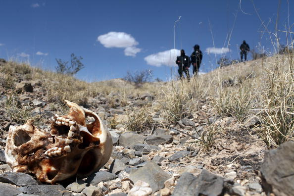 Over 100 bodies found in Mexico secret graves