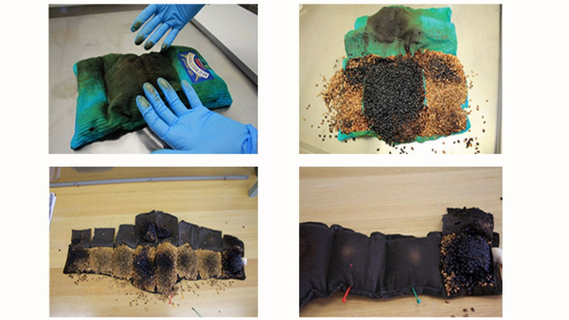 Heatpacks shown burnt and black after overheating