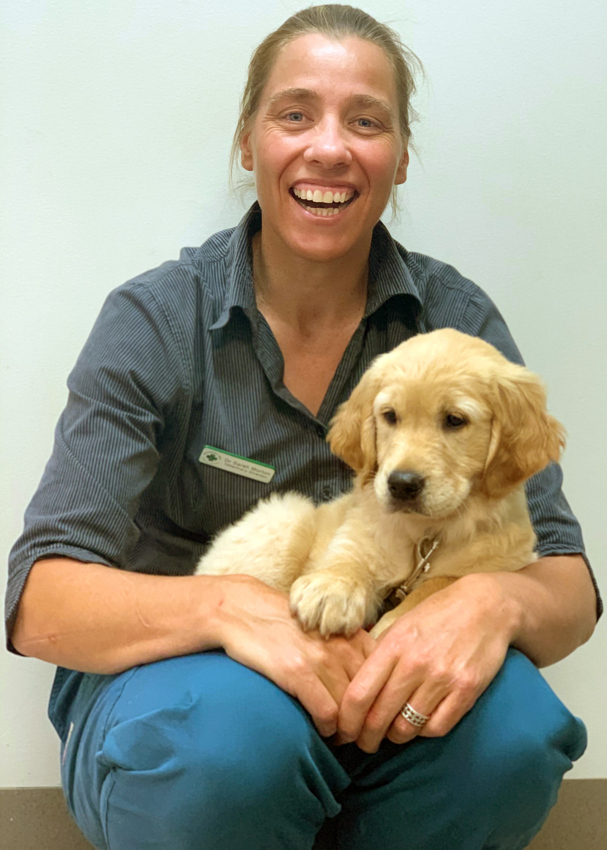 Mental health crisis: Why the suicide rate for veterinarians is so high